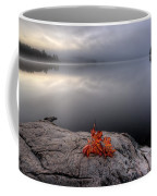 Lake In Autumn Sunrise Reflection Coffee Mug