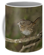 Lincolns Sparrow Coffee Mug