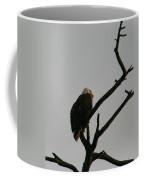 Looking Up To Bald Eagle's Coffee Mug