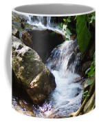 Lower Granite Falls Coffee Mug