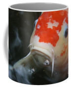Lucky Koi 1 Coffee Mug