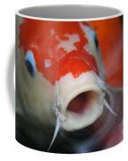 Lucky Koi 3 Coffee Mug