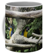 2 Macaws Framed By Tree Branches Inside The Jurong Bird Park Coffee Mug