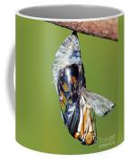Malachite Butterfly Metamorphosis Coffee Mug