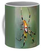Male And Female Silk Spiders With Prey Coffee Mug