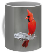 Male Cardinal Coffee Mug