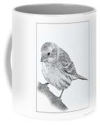 Male House Finch Sketch  Coffee Mug