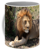 Male Lion On The Masai Mara  Coffee Mug