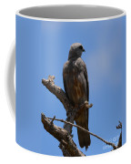 Merlin Falcon  Coffee Mug