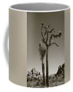 Joshua Tree National Park Landscape No 2 In Sepia Coffee Mug