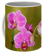 Moth Orchid Coffee Mug