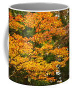 Mount Koya Koya San Japan  Coffee Mug