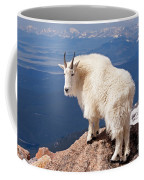 Mountain Goat On Mount Evans Coffee Mug