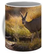 Mule Deer   #3950 Coffee Mug