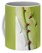 Natures Ornaments Coffee Mug