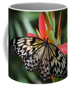 Nature's Treasures  Coffee Mug