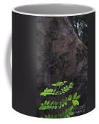 New Leaves Born On Old Tree Coffee Mug