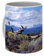 Newberry Lava Beds Coffee Mug