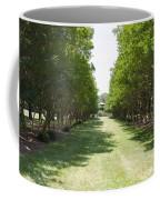 Norfolk Botanical Garden 2 Coffee Mug