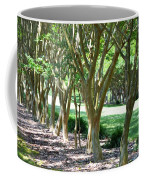 Norfolk Botanical Garden 6 Coffee Mug