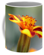 Novelty French Marigold Named Mr. Majestic Coffee Mug