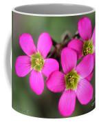 Oxalis Magnifica Coffee Mug