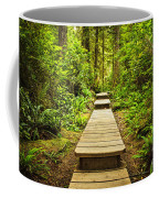 Path In Temperate Rainforest Coffee Mug