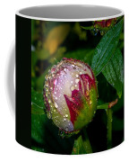 Peony With Rain Drops Coffee Mug