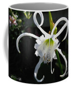 Peruvian Daffodil Named Advance Coffee Mug