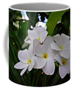 Plumeria Flowers Coffee Mug