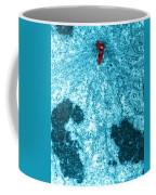 Pole Of Mitotic Spindle, Tem Coffee Mug