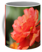 Portulaca Named Sundial Tangerine Coffee Mug