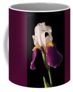 Purple And White Bearded Iris Coffee Mug