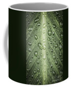 Raindrops On Green Leaf Coffee Mug by Elena Elisseeva