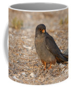 Red Footed Falcon Falco Vespertinus Coffee Mug