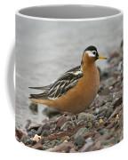 Red Phalarope Coffee Mug