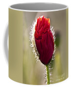 Red Poppy Bud Coffee Mug