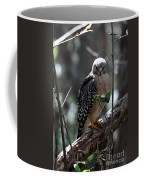 Red - Shouldered Hawk II Coffee Mug
