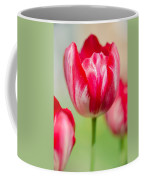 Red Tulips On The Green Background Coffee Mug