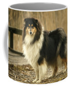 Rough Collie Dog Coffee Mug