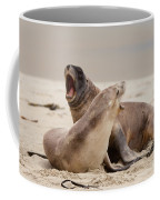 Rough Courtship Of Male And Female Hookers Sealions Coffee Mug