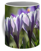 Salute The Sun Coffee Mug