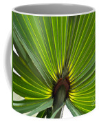 Saw Palmetto  Coffee Mug