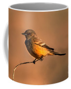 Say's Phoebe Coffee Mug by Robert Bales