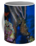 Seahorse And Coral Coffee Mug