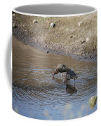Shorebirds Coffee Mug