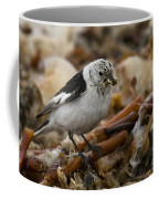 Snow Bunting Coffee Mug