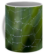 Spider Web With Dew Drops  Coffee Mug
