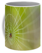 Spider Web With Dew Drops With Spider On Web Coffee Mug