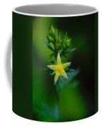 Starflower Coffee Mug